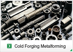 Cold Forging Metalforming